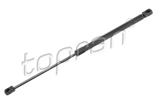 207 125 - Gaasivedru, pagasi / veoruum