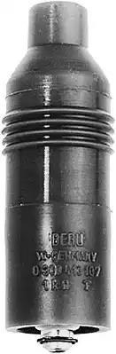 VES 105        0300413111 - Plug, coil