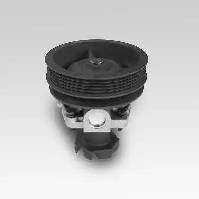 P100 - Water pump