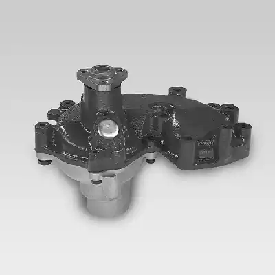 P1049 - Water pump