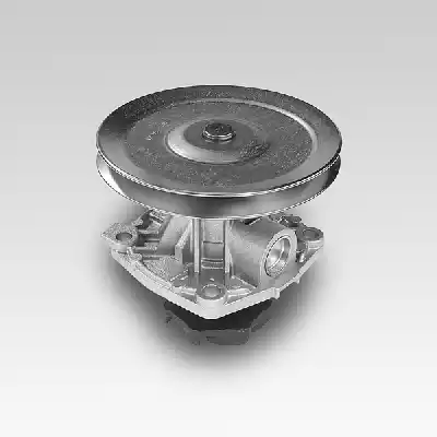 P126 - Water pump