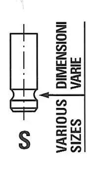 6646/RNT - Outlet valve