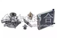 Radiator, engine cooling